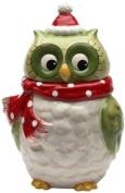 Cosmos Gifts 10901 Owl Design Ceramic Holiday Cookie Jar, 24.4cm