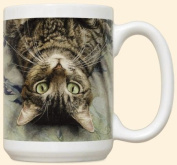 Peculiar Perspective Mug by Fiddler's Elbow - C315