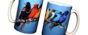 Song Bird Spectrum 330ml Ceramic Coffee Mug or Tea Cup