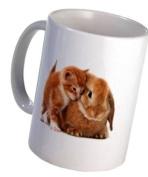 Kitten BUNNY RABBIT Easter Animals 330ml Ceramic Coffee Mug