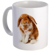 BUNNY RABBIT Easter Animals 330ml Ceramic Coffee Mug