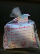 care bears pink birth record pillow keepsake new room decor
