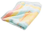 Care Bear Hi Pile Blanket