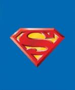 Superman Blanket - Queen Size S logo Superhero Superman Throw Blanket