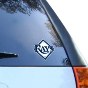 Tampa Bay Rays Window Cling Decal