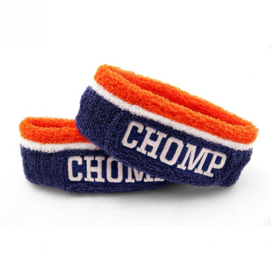 The Chomp Band