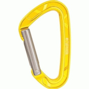 Echo Straight Gate Carabiner