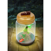 Backyard Safari Firefly and Critter Jar