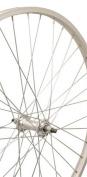 Sta-Tru DT Swiss Spokes Front Wheel