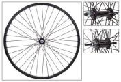 Weinmann AS7X Cruiser/Comfort Wheel Set - 66cm x 1.75, KT Coaster Hub, 36H, Black