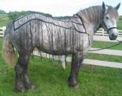 Nylon Webbing Draught Horse Fly Net - Fly Sheet