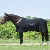 Thermo Manager Stable Blanket - Black