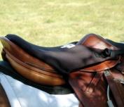 Cashel Crusader Tush Cushion Seat Saddle English