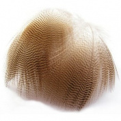 Lemon Barred Wood Duck Feathers