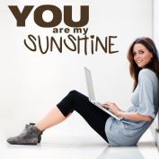 Wallstickersusa Wall Stickers, You Are My Sunshine
