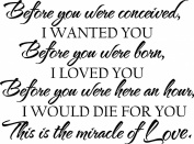 Before you were conceived, I wanted you Before you were born, I loved you Before you were here an hour, I would die for you This is the miracle of Love wall art vinyl sayings