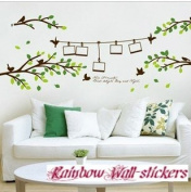 Rainbow Wall-stickers Wall Decor Removable Decal Sticker -Green Branches with Love Birds & Photo Frames