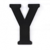 Munch Oversized Black Wood Letters, Y
