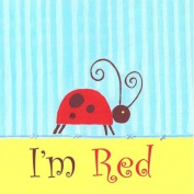 The Little Acorn Learn Your Colors Wall Art, Ladybug