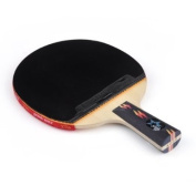DHS Ping Pong Paddle X4006, Table Tennis Racket - Penhold