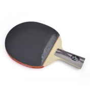 DHS Table Tennis Racket X5006, Ping Pong Paddle Penhold