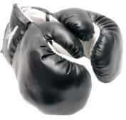 Black Boxing Gloves - 240ml [Misc.]