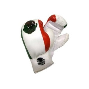 Mexico - Boxing Gloves - 240ml
