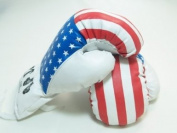 USA - 470ml boxing Gloves Sport Fitness Training