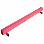 The Beam Store Pink Suede 2.4m Gymnastics Balance Beam