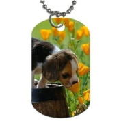 Cute puppy beagle Dog Tag with 76.2cm chain necklace Great Gift Idea