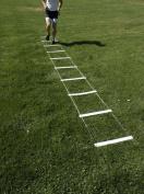 Stroops Spring Back Ladder