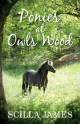 Ponies at Owls' Wood