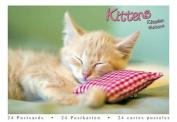 Kittens (Postcard Book)