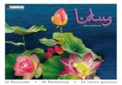Lotus (Postcard Book)
