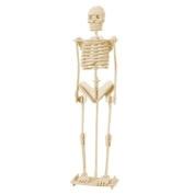 Como Child Assemble Human Skeleton Model 3D Wood Puzzle Toy Construction Kit