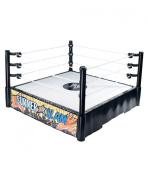 WWE Summerslam Superstar Ring