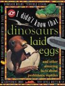 Dinosaurs Laid Eggs