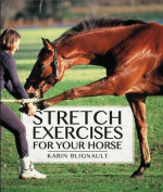 Stretch Exercises for Your Horse