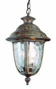 Transglobe 5904 BRT Hanging Lantern - Burnished Rust - 10W in.