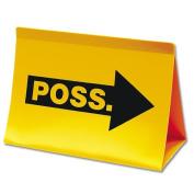 SSG / BSN 1248395 Budget Possession Indicator