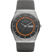 Skagen Grey Mesh Titanium Men's Watch