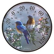Bluebird Buddies Thermometer