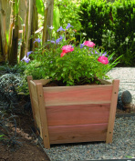 Buyers Choice Phat Tommy Alta Square Planter
