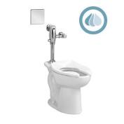AMERICAN STANDARD Toilet Bowl,Floor,Elongated,42cm H 3043001.02