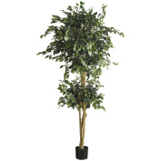 Nearly Natural 5268 6 ft. Double Ball Ficus Silk Tree