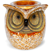 ScentSationals Spotted Owl Warmer
