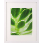 Canopy 27.9cm x 35.6cm /20.3cm x 25.4cm Gallery Picture Frame, White