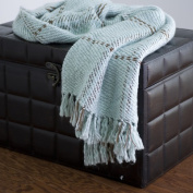 Rizzy Home TH-0081 Throw in Blue / Brown