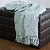 Rizzy Home T-0113 Throw in Spa Blue