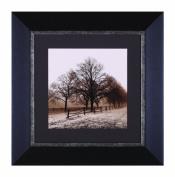 Art Effects Row Of Trees Framed Artwork